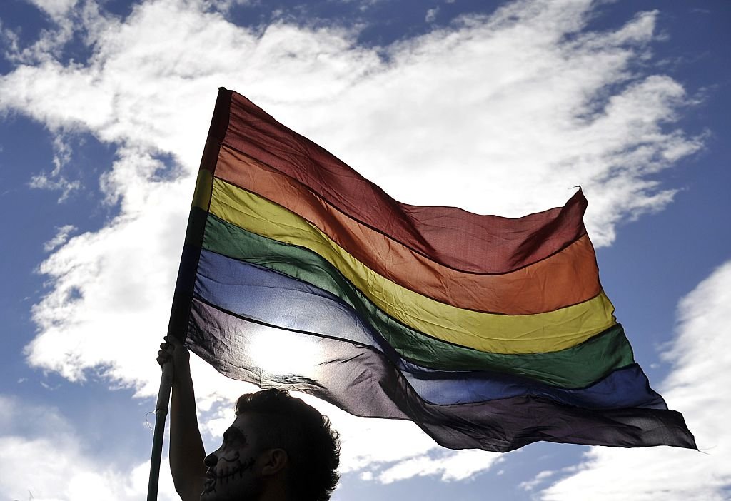 A reveler flutters a rainbow flag during the Gay Pride Parade in Bogota, Colombia on June 28, 2015. AFP PHOTO / GUILLERMO LEGARIA        (Photo credit should read